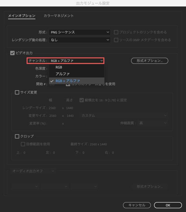 チャンネルがRGB+アルファであることを確認しOKをクリック