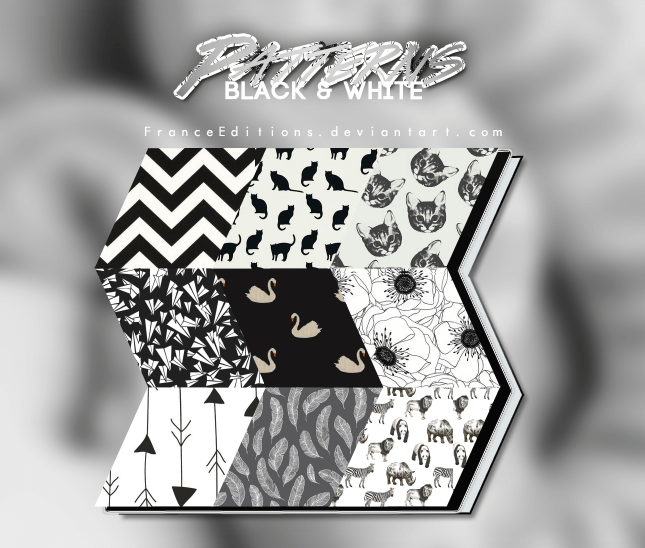 Black and White // 13 PATTERNS