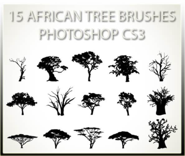フォトショップ ブラシ 無料 木 アフリカの木 15 African Tree Brushes CS3