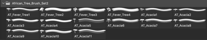 フォトショップ ブラシ 無料 木 アフリカの木 15 African Tree Brushes 2 CS3
