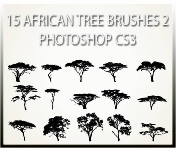 フォトショップ ブラシ 無料  木 ツリー 15 African Tree Brushes 2 CS3