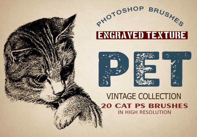 """フォトショップ ブラシ Photoshop cat Kittie Brush 無料 イラスト 猫 キャット 20 Pet """"Cats"""" PS Brushes."""