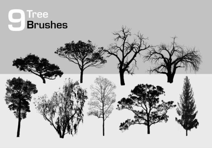 フォトショップ ブラシ Photoshop Brush 無料 イラスト 木 森 林 草木 9 High Resolution Tree Brushes