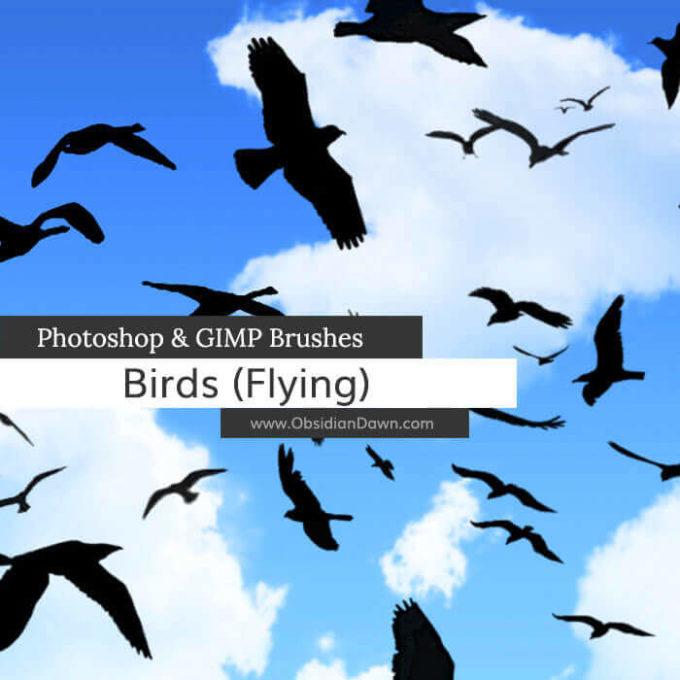 フォトショップ ブラシ Photoshop Bird Brush 無料 イラスト 鳥 バード フォトショップ ブラシ Photoshop Bird Brush 無料 イラスト 鳥 バードBirds Flying Photoshop and GIMP Brushes