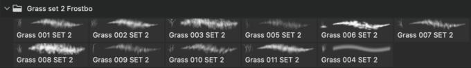 フォトショップ ブラシ Photoshop Brush 無料 イラスト 草 雑草 植物 プランツ Brush Grass Set2 for Photoshop