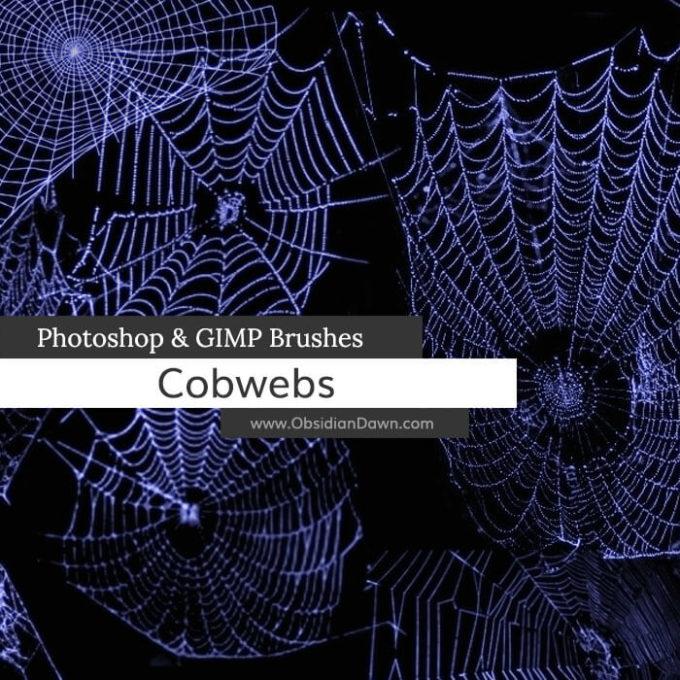 フォトショップ ブラシ Photoshop Brush 無料 クモ 蜘蛛 蜘蛛の巣 クモの巣 スパイダー イラスト Cobwebs Photoshop and GIMP Brushes