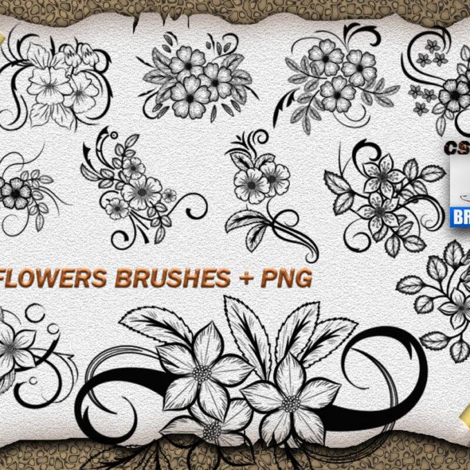 フォトショップ ブラシ Photoshop Brush 無料 Flower イラスト 花 フラワー 11 Flower Ornaments Brushes