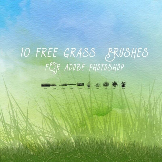 フォトショップ ブラシ Photoshop Brush 無料 イラスト 草 雑草 植物 葉 プランツ 10 Free Grass Brushes