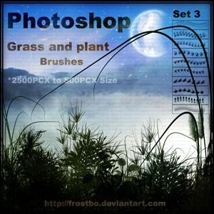 フォトショップ ブラシ Photoshop Brush 無料 イラスト 草 雑草 植物 葉 プランツ Grass and Plant Brushes