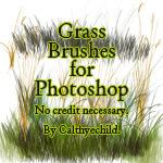 フォトショップ ブラシ 無料 草 雑草 植物 Grass brushes for Photoshop