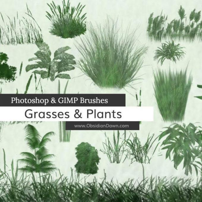 フォトショップ ブラシ 無料 草 雑草 Grasses and Plants Photoshop and GIMP Brushes