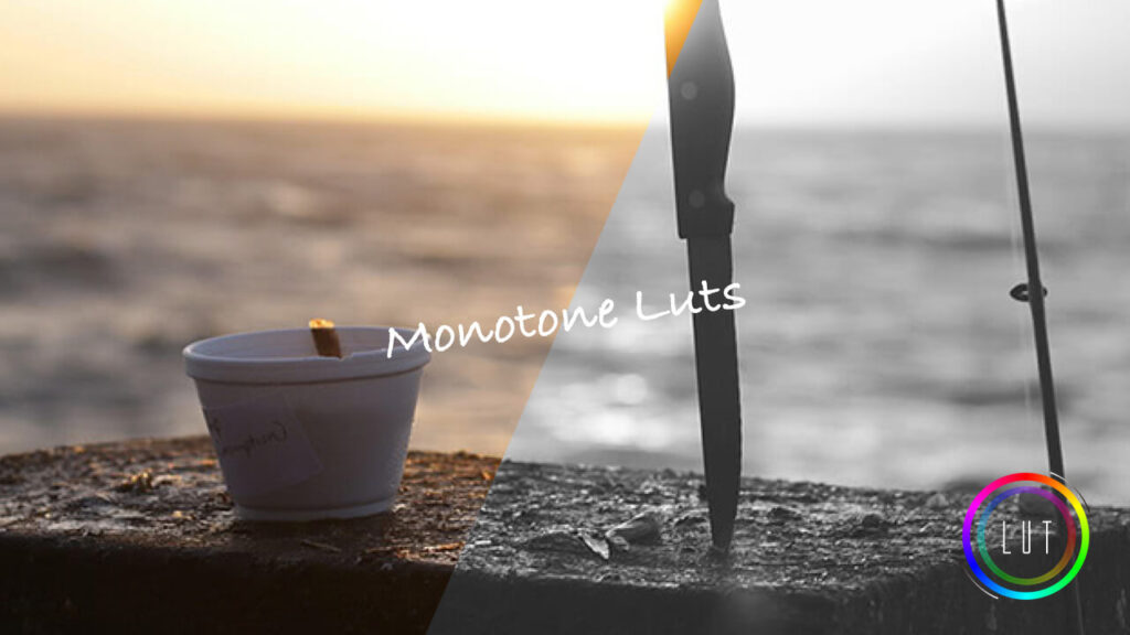 モノクローム モノトーン LUT 無料 ダウンロード cube look
