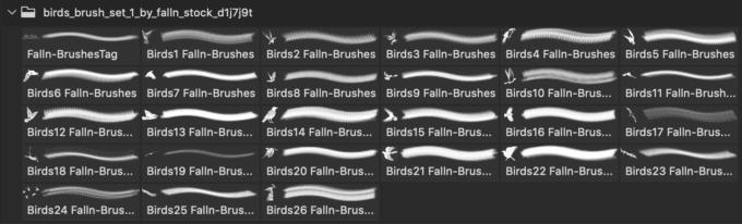 フォトショップ ブラシ Photoshop Bird Brush 無料 イラスト 鳥 バード フォトショップ ブラシ Photoshop Bird Brush 無料 イラスト 鳥 バードフォトショップ ブラシ Photoshop Bird Brush 無料 イラスト 鳥 バード フォトショップ ブラシ Photoshop Bird Brush 無料 イラスト 鳥 バード Birds Brush Set 1