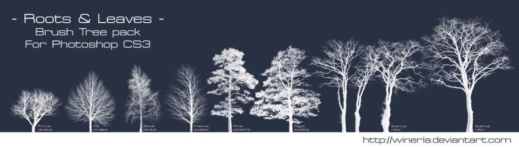 フォトショップ ブラシ Photoshop Brush 無料 イラスト 木 森 林 草木 Tree Brushes Pack