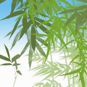 フォトショップ ブラシ Photoshop Brush 無料 イラスト 木 森 林 竹 バンブー Bamboo