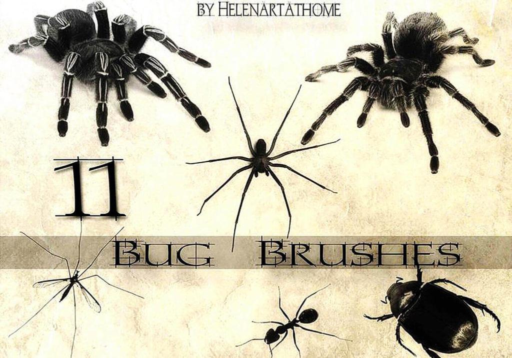フォトショップ ブラシ Photoshop Brush 無料 クモ クモの巣 蜘蛛 スパイダー Bug Brushes