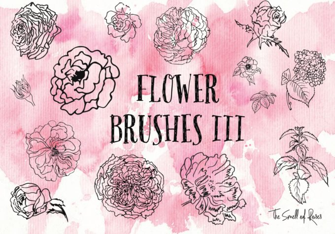 フォトショップ ブラシ Photoshop Brush 無料 Flower イラスト 花 フラワー Flower Brushes 3