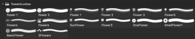 フォトショップ ブラシ Photoshop Brush 無料 Flower イラスト 花 フラワー Vector Flower Brushes