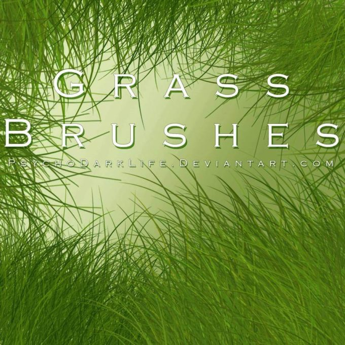 フォトショップ ブラシ Photoshop Brush 無料 イラスト 草 雑草 植物 プランツ Grass Brushes