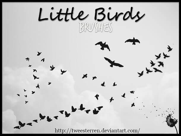 フォトショップ ブラシ Photoshop Bird Brush 無料 イラスト 鳥 小鳥 バード Tiny Little Birds