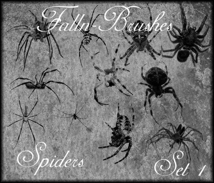 フォトショップ ブラシ Photoshop Brush 無料 クモ 蜘蛛 スパイダー イラスト Spider Brushes Set 1