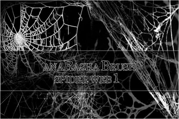 フォトショップ ブラシ Photoshop Brush 無料 クモ 蜘蛛 蜘蛛の巣 クモの巣スパイダー イラスト Spider