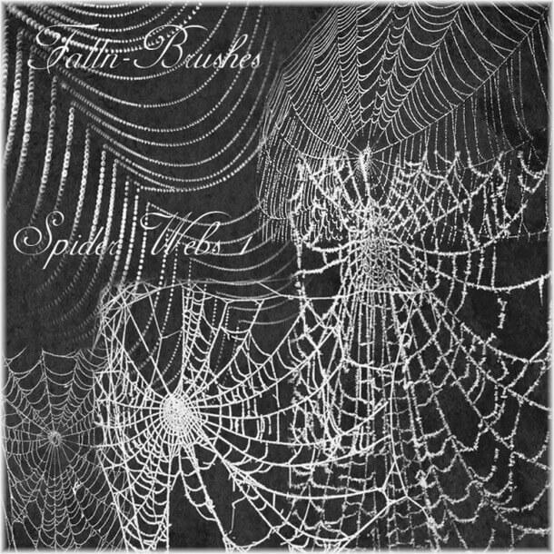 フォトショップ ブラシ Photoshop Brush 無料 クモ クモの巣 蜘蛛 スパイダー Spider Web Brushes
