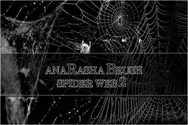 フォトショップ ブラシ Photoshop Brush 無料 クモ 蜘蛛 蜘蛛の巣 クモの巣 スパイダー イラスト spider web brush 2