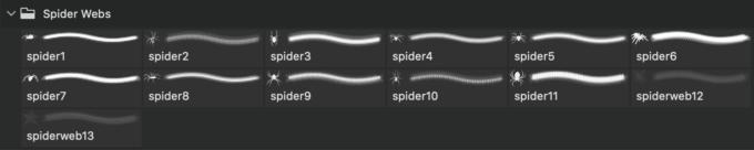 フォトショップ ブラシ Photoshop Brush 無料 クモ クモの巣 蜘蛛 スパイダー Spider Webs