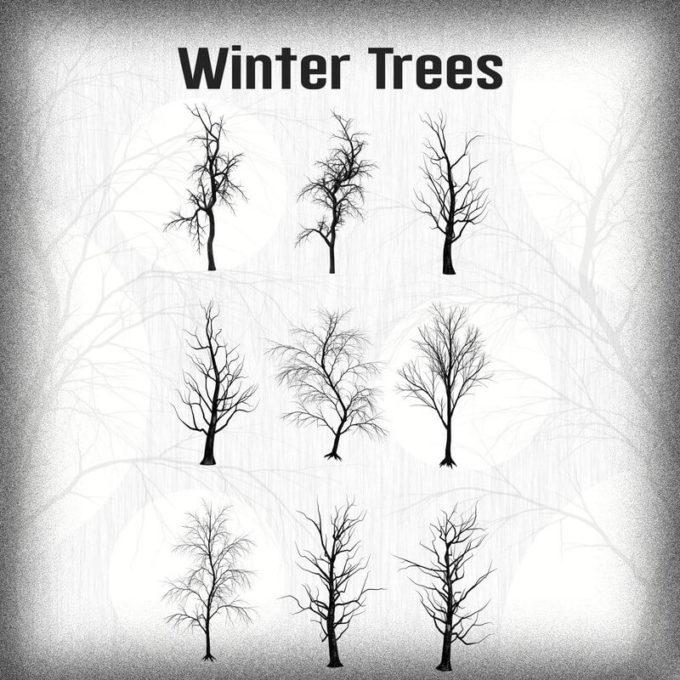 フォトショップ ブラシ Photoshop Brush 無料 イラスト 木 森 林 草木 Winter Trees