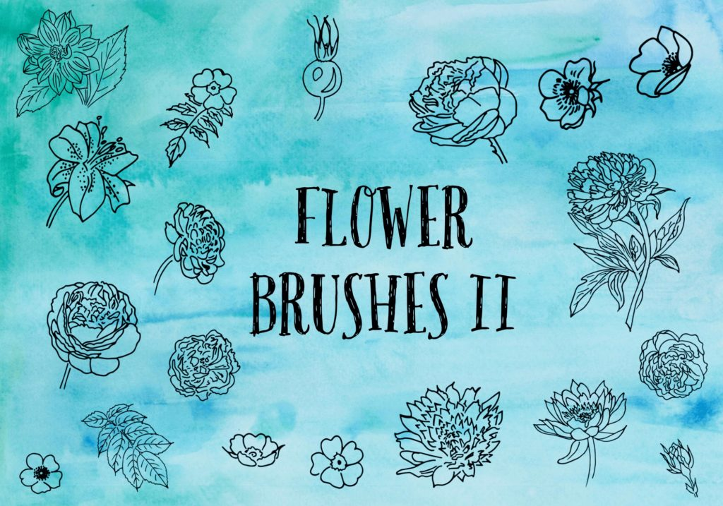 フォトショップ ブラシ Photoshop Brush 無料 Flower イラスト 花 フラワー Flower Brushes 2