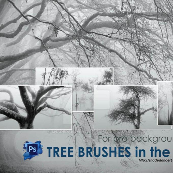 フォトショップ ブラシ Photoshop Brush 無料 イラスト 木 森 林 草木 Trees in the Fog