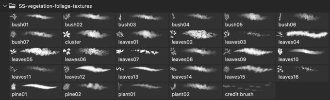 フォトショップ ブラシ Photoshop Brush 無料 イラスト 草 雑草 植物 葉っぱ プランツ Vegetation / Foliage Textures Photoshop Brushes