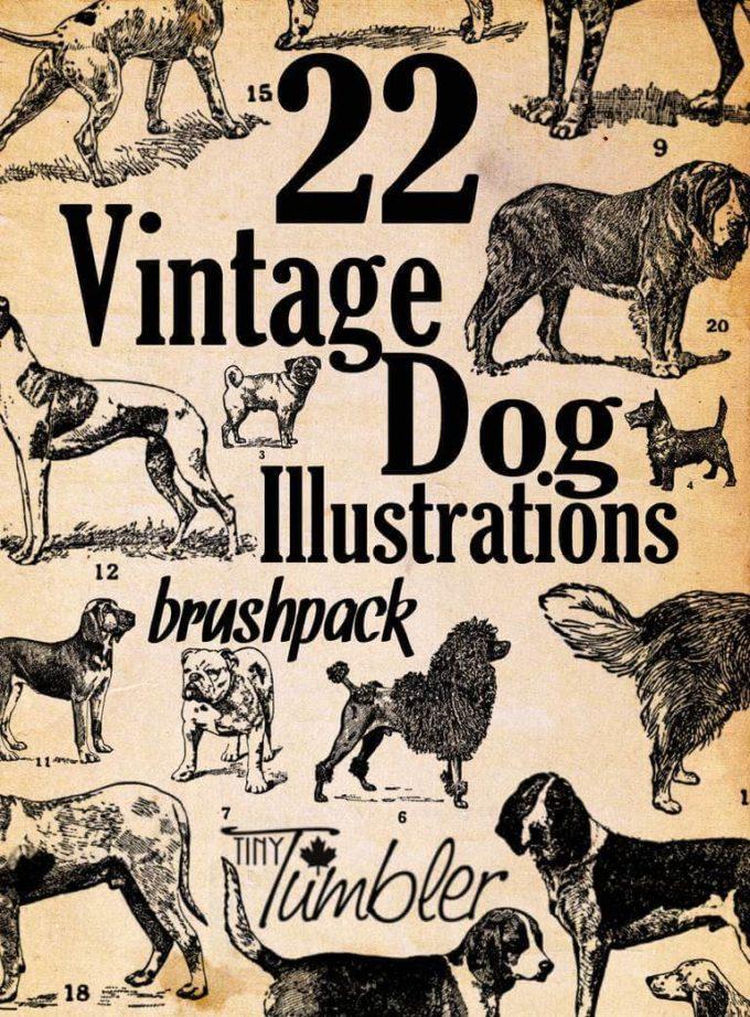 フォトショップ ブラシ Photoshop Dog Brush 無料 イラスト ドッグ 犬 22 Vintage Dog Illustrations Brushpack