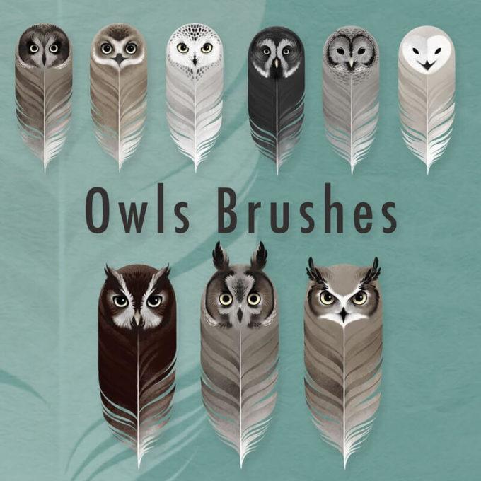 フォトショップ ブラシ Photoshop Bird Brush 無料 イラスト 鳥 バードフォトショップ ブラシ Photoshop Bird Brush 無料 イラスト 鳥 バード フォトショップ ブラシ Photoshop Bird Brush 無料 イラスト 鳥 バード フクロウ 9 Owls Brushes