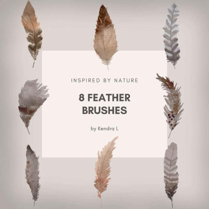 フォトショップ ブラシ Photoshop Bird feather Brush 無料 イラスト 鳥 バード 8 Free Feather Brushes