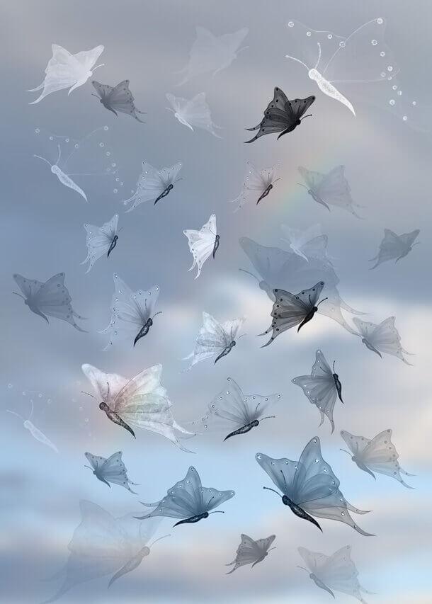 フォトショップ ブラシ Photoshop Butterfly Brush 無料 イラスト 蝶 Magical Butterflies