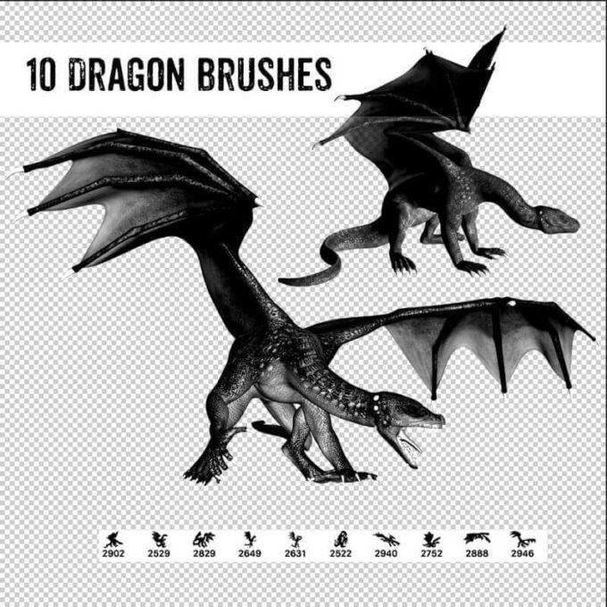 フォトショップ ブラシ Photoshop Dragon Brush Free abr 無料 イラスト ドラゴン 竜 龍 10 Dragon Poses Brushes