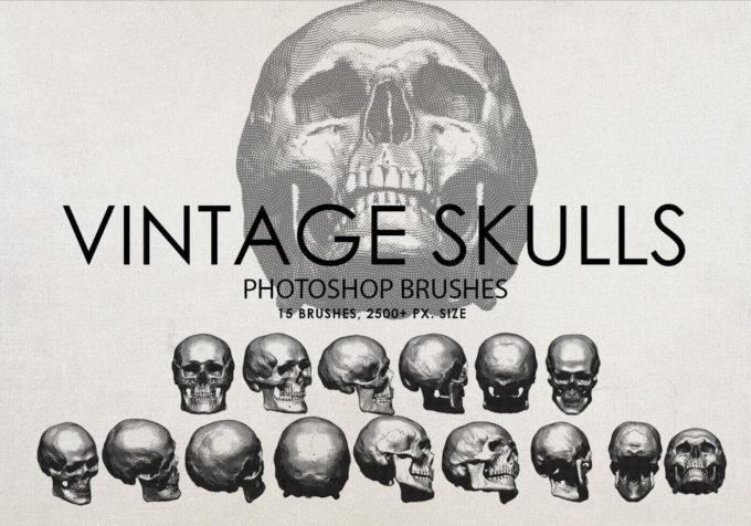 フォトショップ ブラシ Photoshop Skeleton Brush 無料 イラスト スカル 骸骨 ガイコツ スケルトン Free Vintage Skulls Photoshop Brushes