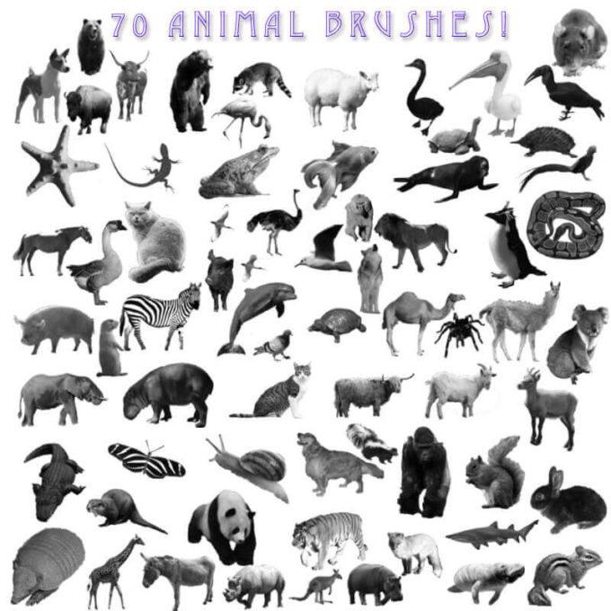 フォトショップ ブラシ Photoshop Animal Brush 無料 イラスト 動物 アニマル A-Z Animal Brushes