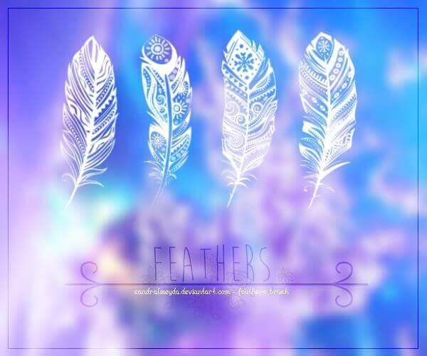 フォトショップ ブラシ Photoshop Bird feather Brush 無料 イラスト 鳥 バード Artistic Feathers