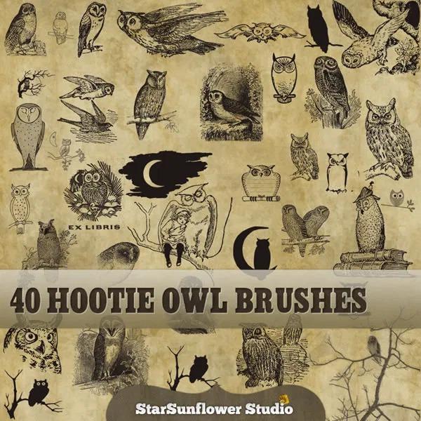 フォトショップ ブラシ Photoshop Bird Brush 無料 イラスト 鳥 バードフォトショップ ブラシ Photoshop Bird Brush 無料 イラスト 鳥 バード フォトショップ ブラシ Photoshop Bird Brush 無料 イラスト 鳥 バード フクロウ 40 Free Hootie Owls