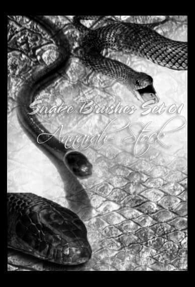 フォトショップ ブラシ Photoshop Snake Brush 無料 イラスト 蛇 ヘビ へび スネーク PhotoshopBrushes: Snakes