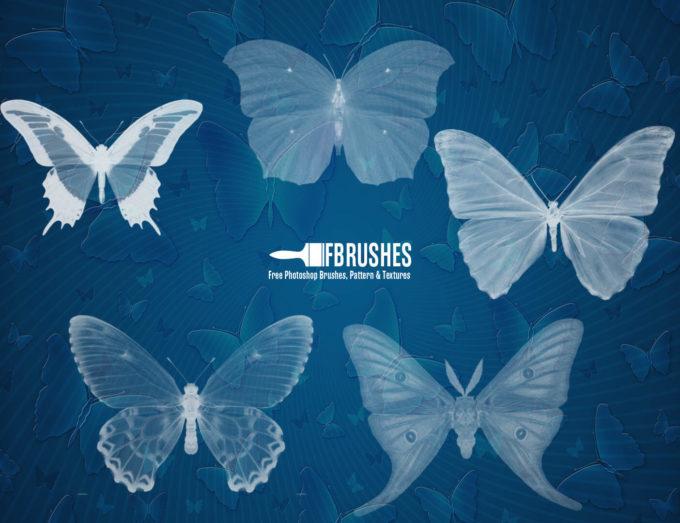 フォトショップ ブラシ Photoshop Butterfly Brush 無料 イラスト 蝶 Butterflies Pack