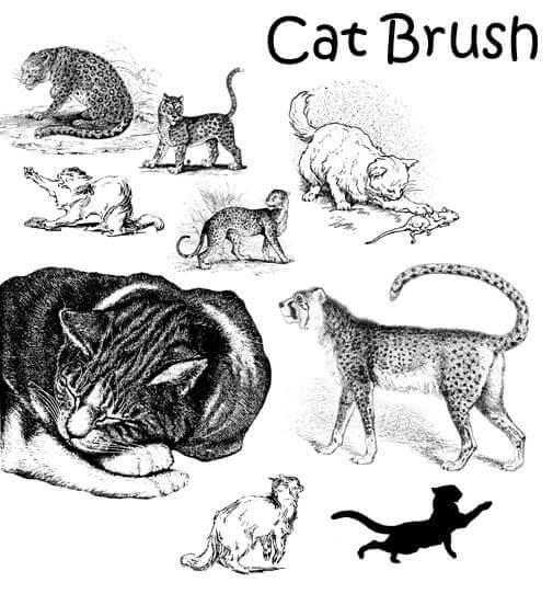 フォトショップ ブラシ Photoshop cat Kittie Brush 無料 イラスト 猫 キャット Cat Brush