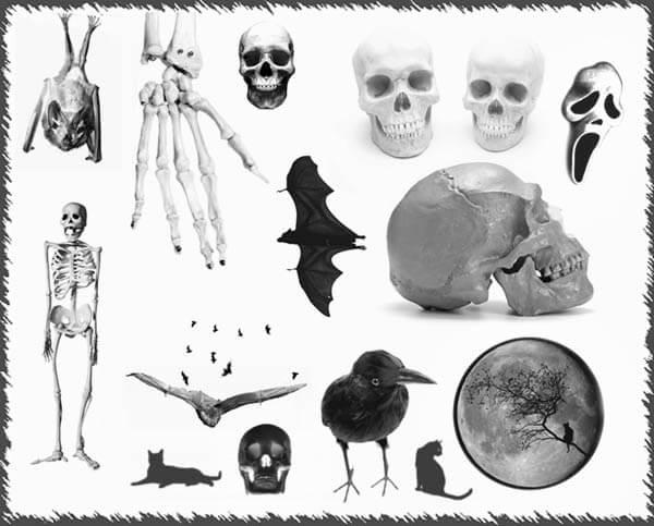 フォトショップ ブラシ Photoshop Skeleton Brush 無料 イラスト スカル 骸骨 ガイコツ スケルトン Creepy Brushes