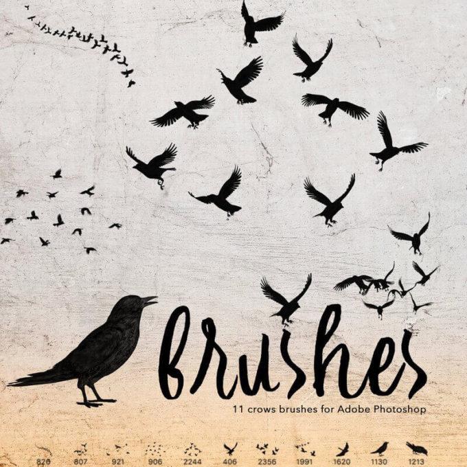 フォトショップ ブラシ Photoshop Raven Brush 無料 イラスト 鳥 バード カラス レイバン 11 Crows Brushes