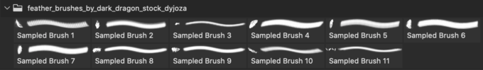 フォトショップ ブラシ Photoshop Bird feather Brush 無料 イラスト 鳥 バード feather brushes
