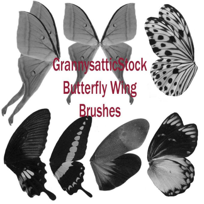 フォトショップ ブラシ Photoshop Butterfly Brush 無料 イラスト 蝶 Grannys Butterfly Wing Brushes
