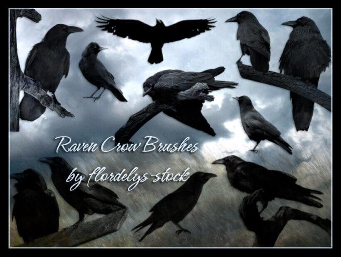 フォトショップ ブラシ Photoshop Raven Brush 無料 イラスト 鳥 バード カラス レイバン Raven Crow Brushes